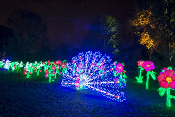 Christmas tree at Kew Gardens