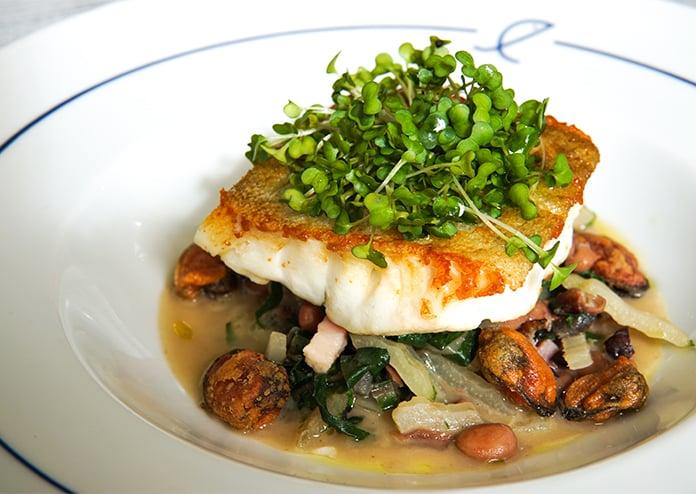 Summerhouse Maida Vale fish dish