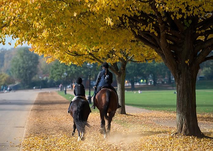 Horseriding - Outdoor activities to do in London